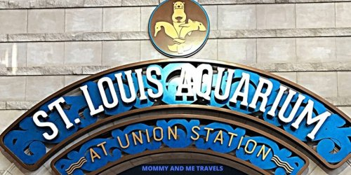Things To Do At Union Station St Louis