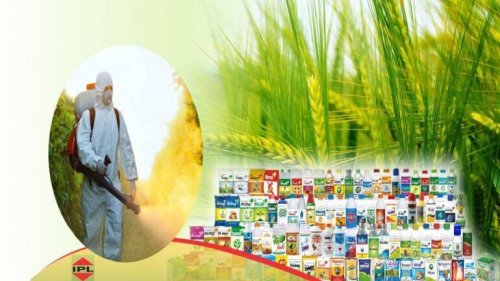 India Pesticides' Rs 800-crore IPO Subscribed 1.63 Times On Second Day Of Bidding