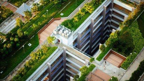 Real Estate Dictionary: Making Sense Of Delhi's Draft Master Plan 2041