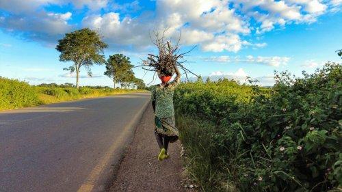 How socio-economic conditions shape renewable energy uptake in Zimbabwe