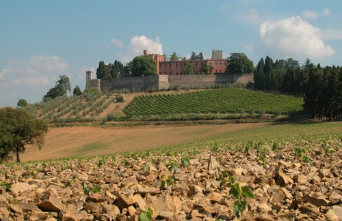Italy's Oldest Winery