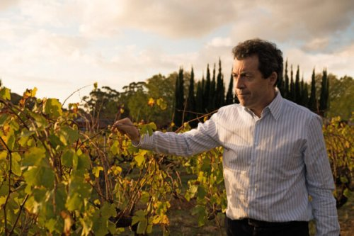 Meet the Chief Winemaker Behind Australia's Iconic Penfolds and Its Flagship Grange