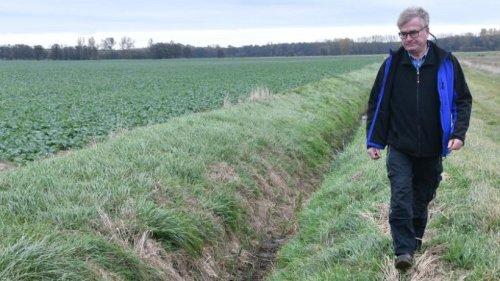 Moore in Brandenburg schützen: Bauern machen Vorschläge