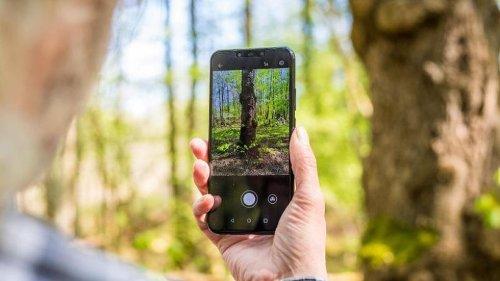 Die Natur entdecken mit dem Smartphone