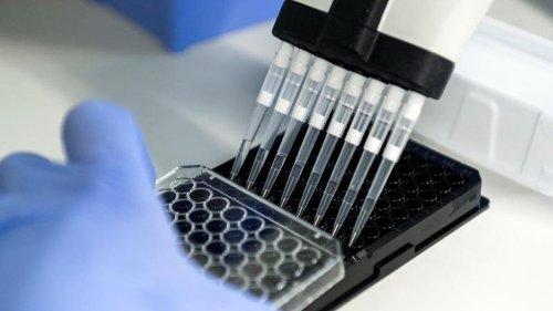 Corona verzögert Krebsforschung um zwei Jahre