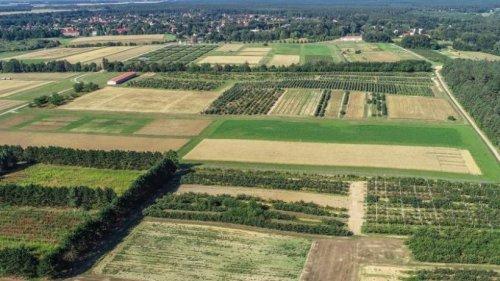 Leibniz-Zentrum: Mosaik-Felder für Landwirtschaft
