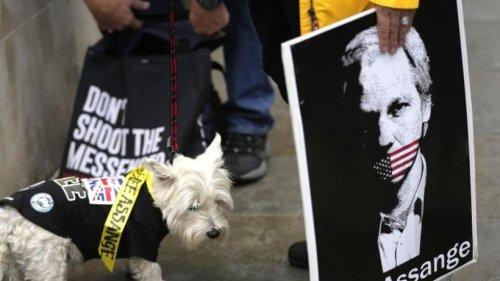 USA fordern erneut Auslieferung von Julian Assange