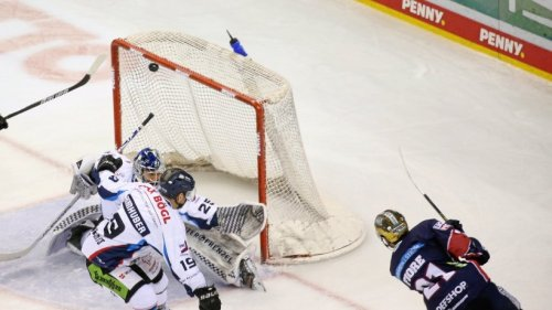 Eishockey: Straubing Tigers gegen die Eisbären Berlin live im TV