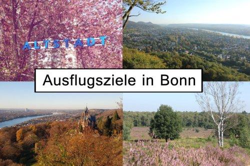 Ausflugsziele in Bonn und Umgebung | 14 Ideen für das ganze Jahr