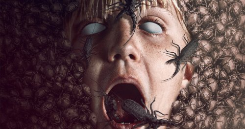 'The Nest' Trailer: Dee Wallace Fights an Evil-Infested Teddy Bear