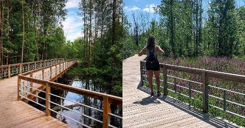 This Easy Nature Walk Outside Montreal Takes You Over Boardwalks Through A Scenic Forest