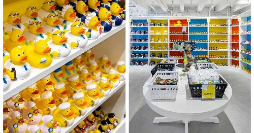 This Montreal Shop Has Canada's Biggest Rubber Duck Collection & It's So Joyful (PHOTOS)