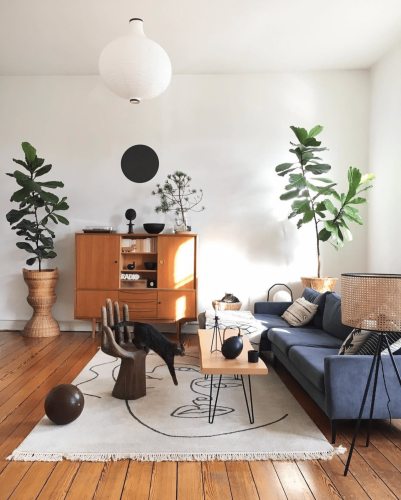 15 Gorgeous Houseplants That Will Thrive in Your Living Room