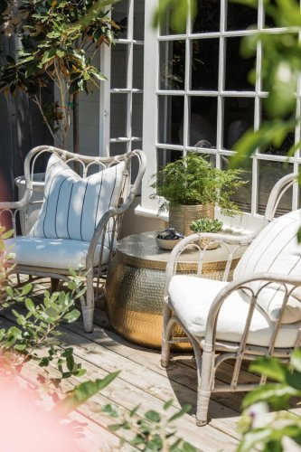 20 Best Patio Plants and Flowers That Will Thrive Outdoors