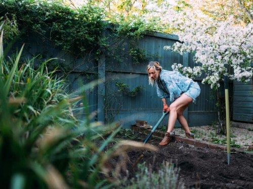 Gartenarbeiten, zu denen Mieter verpflichtet sein können