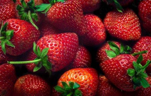 Die besten Erdbeersorten für Garten, Balkon und Terrasse