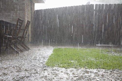 Gartenboden nach einem Starkregen richtig pflegen