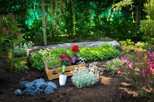 Wie kann man mit Garten umziehen?