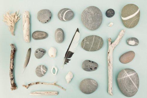 Treibholz, Steine und Kastanien für DIY-Projekte richtig reinigen