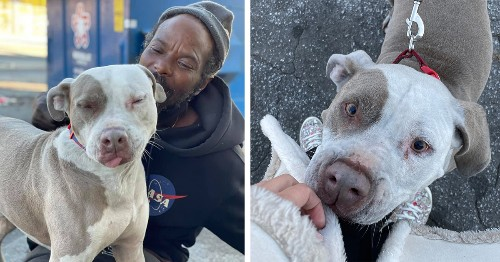 Homeless Man Rushes Into Burning Animal Shelter To Save Every Animal