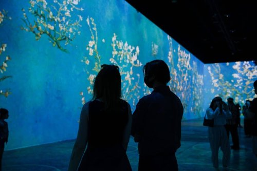 Immersive Van Gogh Exhibit Is Coming to New York City This Summer