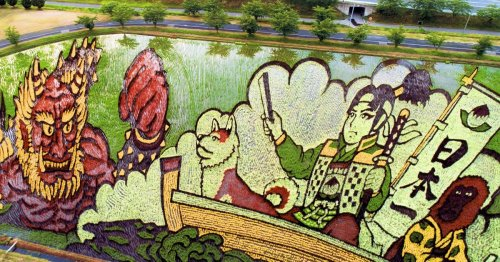 Japanese Farmers Plant Specific Strains of Rice to Grow Colorfully Illustrated Fields