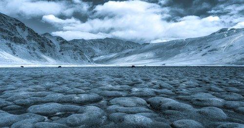 Photographer Braves Sub-Zero Temperatures to Capture the Winter in Ladakh, India