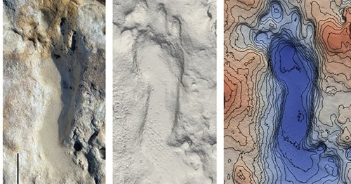 100,000-Year-Old Fossilized Footprints of Neanderthals Found On a Beach in Spain
