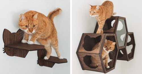 These Floating Cat Shelves Are a Stylish Way To Entertain Your Feline Friends