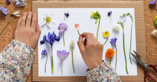 Learn How to Press Flowers and Make Your Beautiful Blooms Last Forever