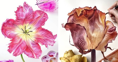 Hyperrealistic Watercolor Paintings Perfectly Recreate the Delicate Beauty of Flower Petals
