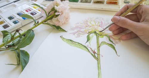 10 Essential Watercolor Painting Tips for Artist Enthusiasts and Professionals Alike