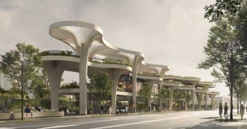 Solar Powered Tree Canopies Reimagines a Traditional Chinese Marketplace in Shanghai