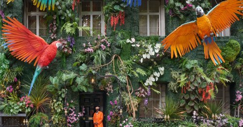 Sprawling Rainforest With Giant Parrots Line a Fantastic Façade in London