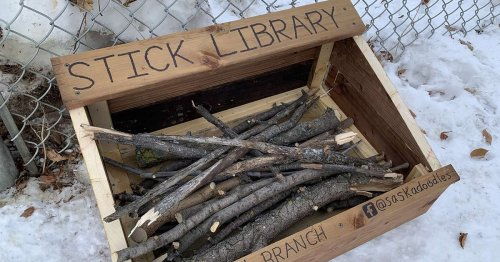 "Father and Son Build 'Stick Library' for Local Dogs To ""Borrow"" Sticks"