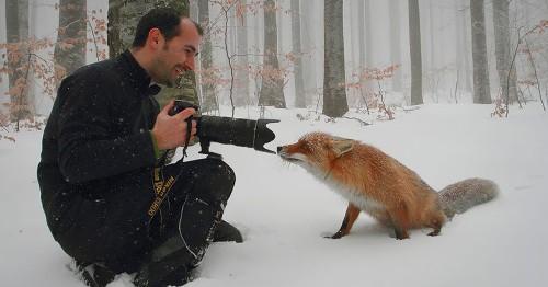 Viral Twitter Thread Shows 40 Wild Animals Adorably Interrupting Wildlife Photographers