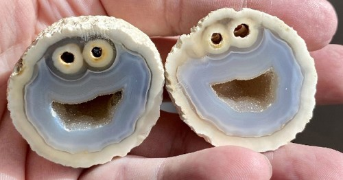 Geologists Discover Agate With Cookie Monster Hidden Inside When Split Open