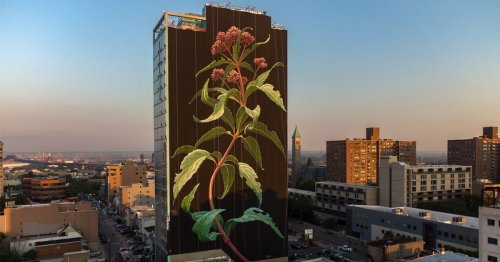 Massive 20-Story Flower Mural Sprouts From Jersey City Skyline