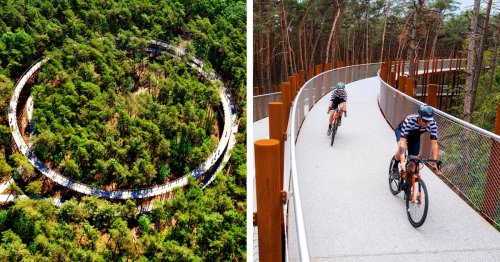 You Can Now Cycle Among the Treetops On This Raised Bike Path in a Belgian Forest