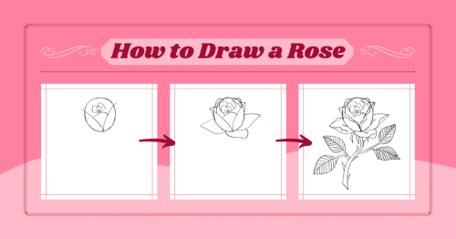 How to Draw a Beautiful Rose in 10 Simple Steps [Infographic]
