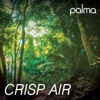 Crisp Air - Single - Palma - Music - MySound Music