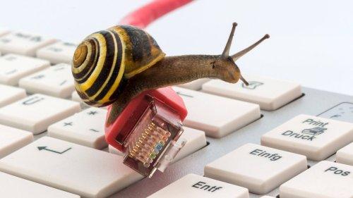 Gesetz verbietet Schneckentempo-Internet