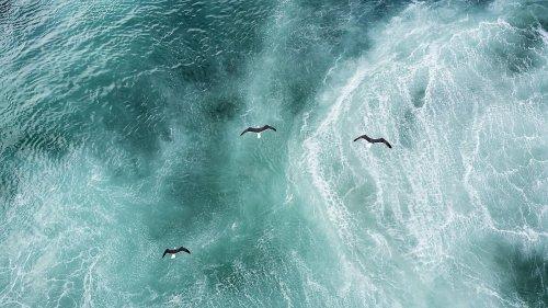 Forscher in Sorge wegen Atlantik-Strömungen
