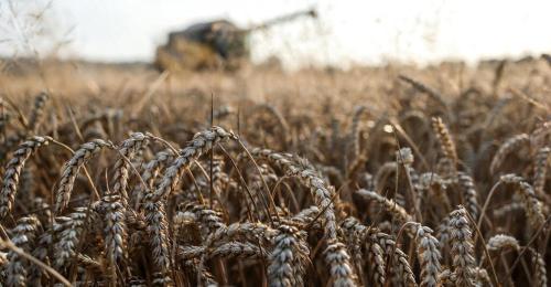 """Lebensmittelindustrie kämpft mit """"historischer Kostenlawine"""""""
