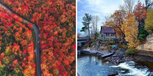 This Fall Driving Tour Near Toronto Leads To Quaint Towns & A Rushing Waterfall