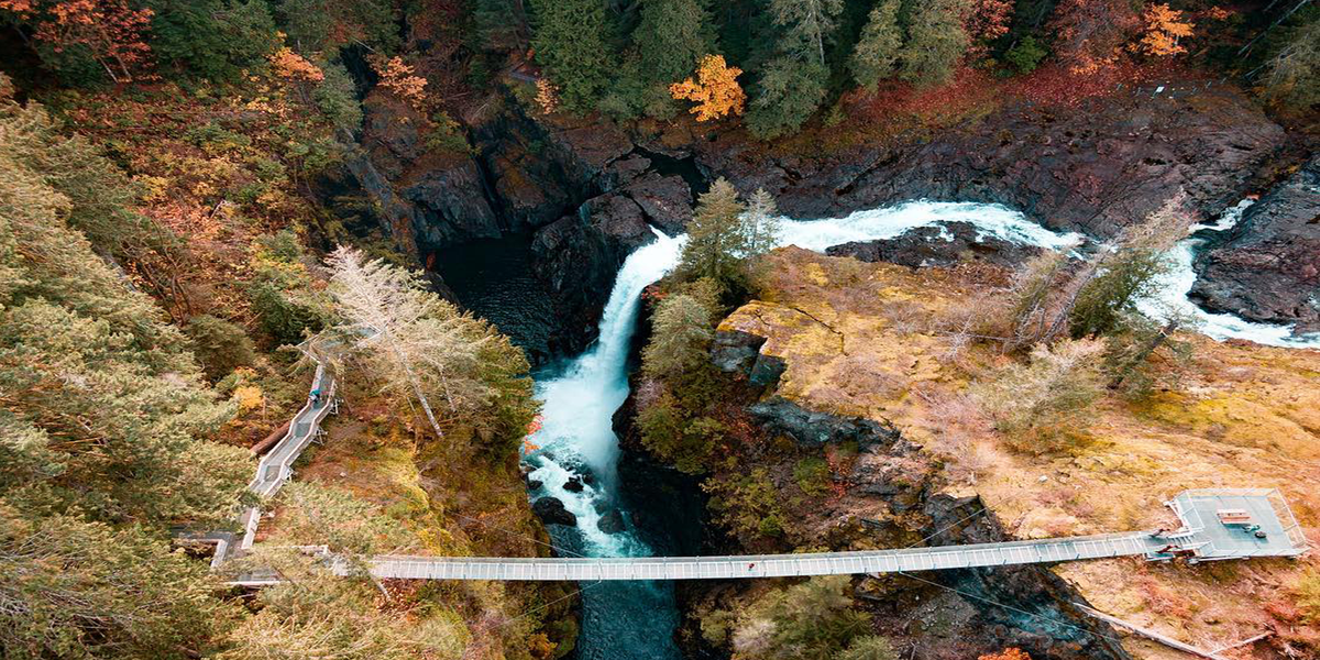 This Suspension Bridge In BC Will Take You Over The Most Stunning Fall Colours