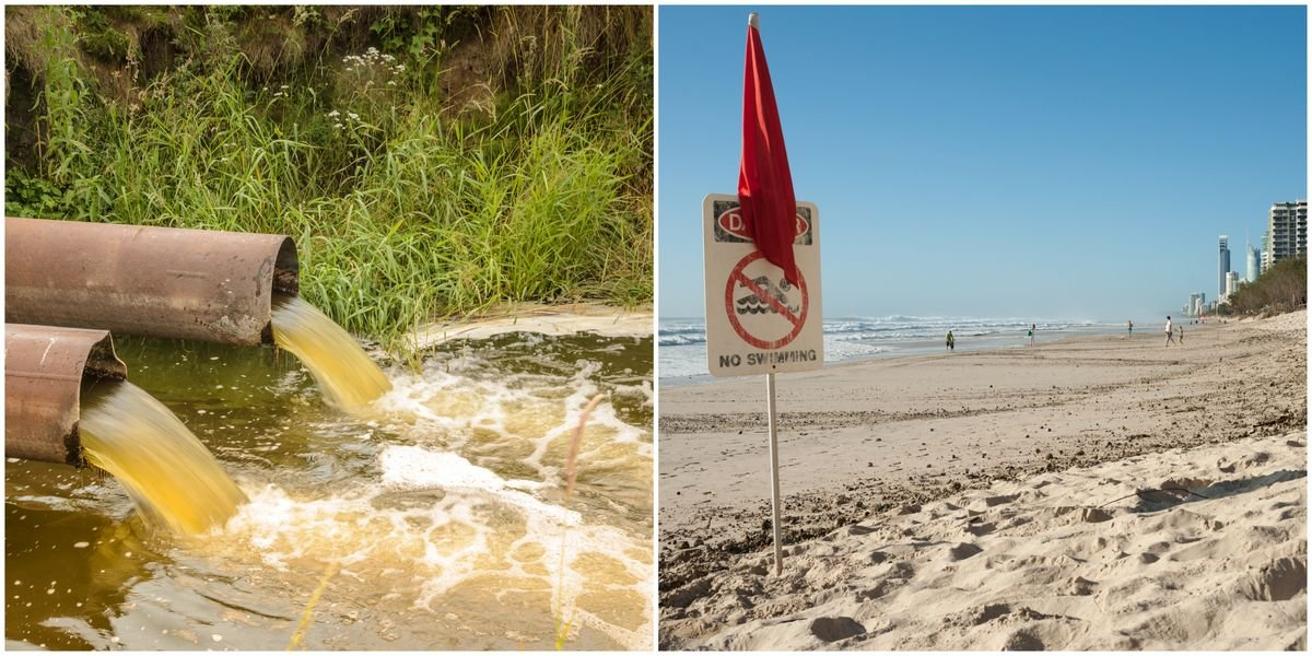 A Ton Of Florida Beaches Are Covered In Poop Water Right Now
