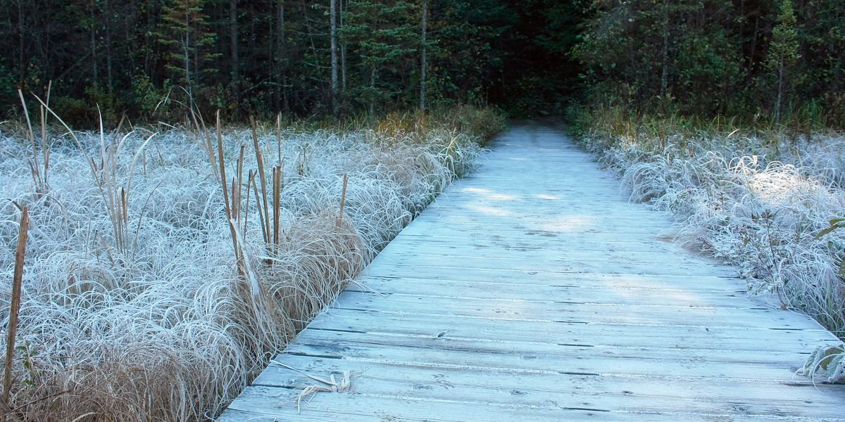 Frost Advisories Were Issued In 3 Different Provinces & Some Temperatures Are Below Zero