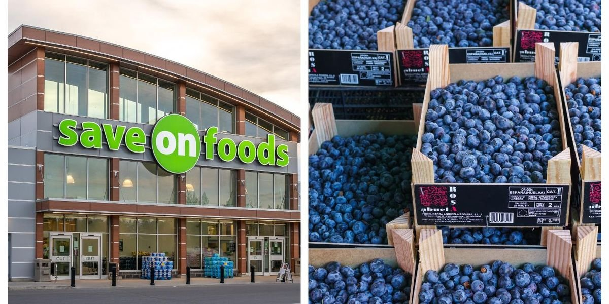 There's A Blueberry Recall In Canada Because Some Dole Products Could Make You Sick