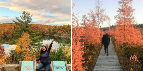 7 Boardwalks Around Ottawa That Will Lead You To Spectacular Fall Views